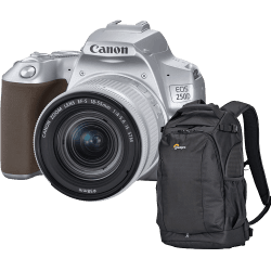 Canon EOS 250D Argent + 18-55 mm IS STM + Sac Lowepro Flipside 300